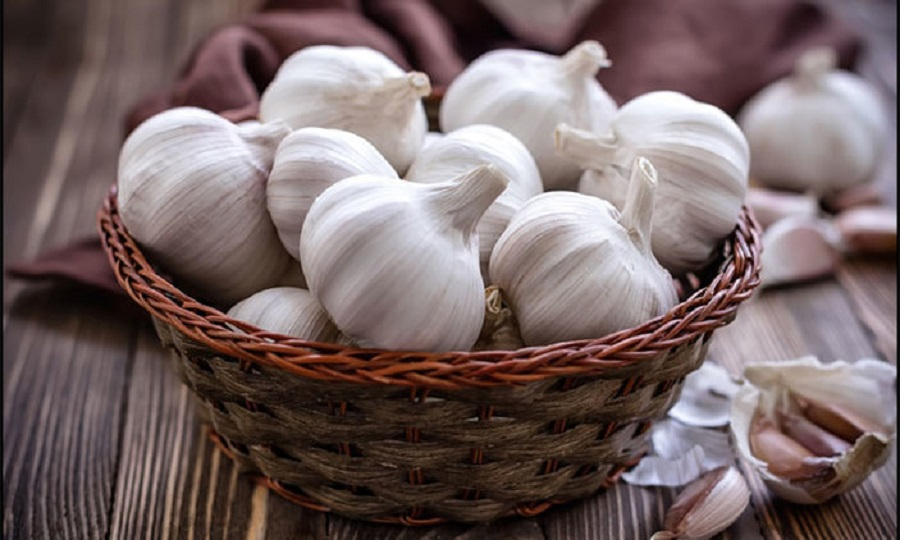 Garlic is the Ultimate Survival Food for the Smart Prepper