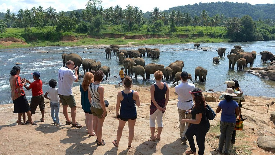 Sri Lanka Tourism Records 0.5 Percent Growth in October